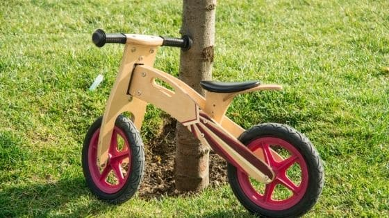 10 Best Balance Bikes For 1 Year Old